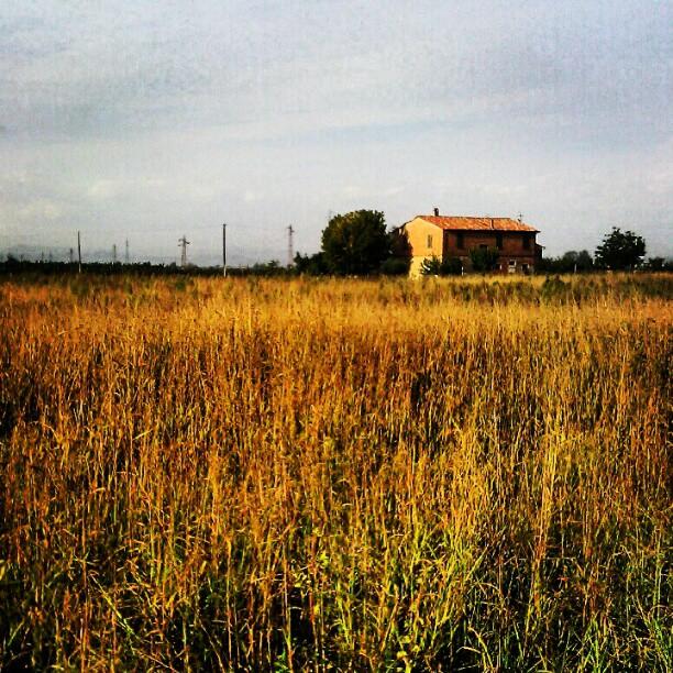 Casa di campagna - azienda agricola di Faenza - Ravenna - foto di Barry Bassi