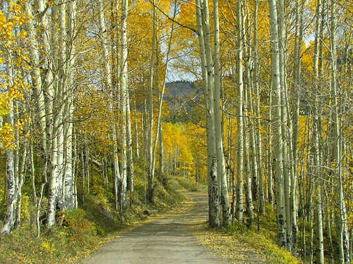 autumn mountains rural colorado stormking roads aspen montrosecolorado cimarronmountains
