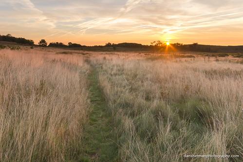 park grass sunrise virginia nationalpark meadow shenandoah bigmeadows shenandoahnationalpark