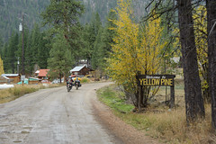 Entering Yellow Pine