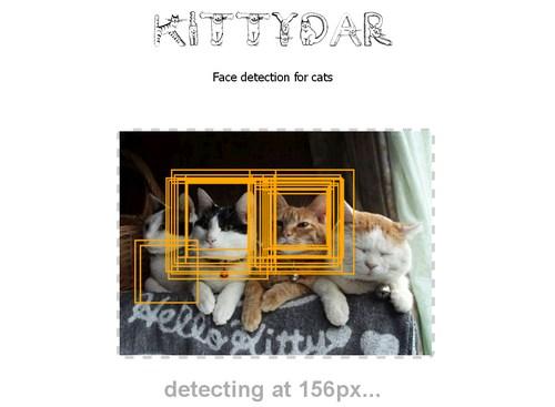 Kittydar7