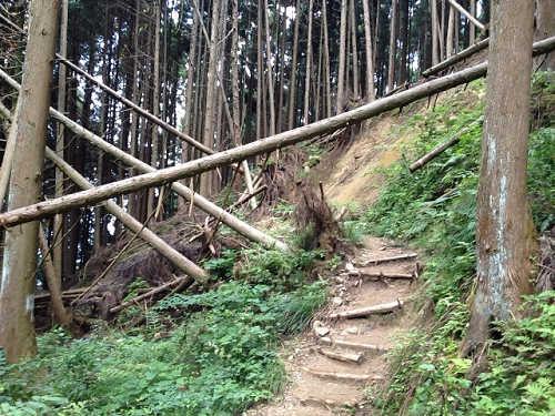 金剛山登山(高天彦神社から)-17