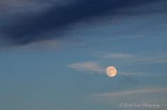 Friday Night Full Moon