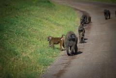 2012 Kenya (269 of 170)