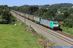 2831 sncb logistics ligne 24 boirs 18 aout 2012
