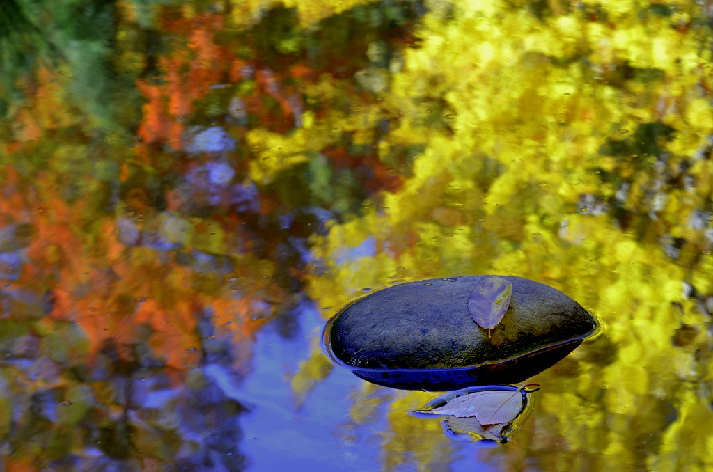 Fall reflection in Duluth, MN