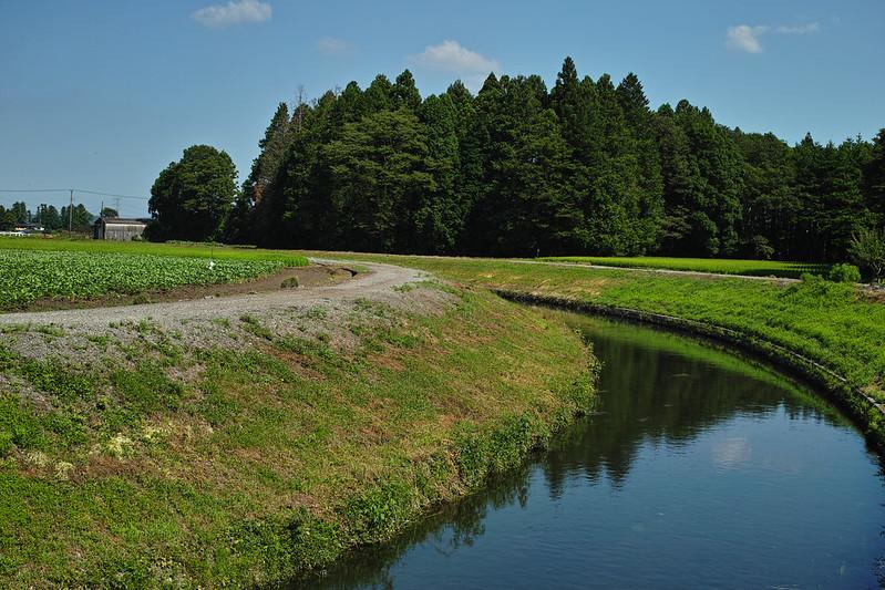 2012 Utsunomiya - Summer