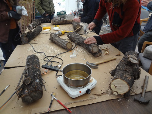 2012.10_mushroom cultivation workshop_logs