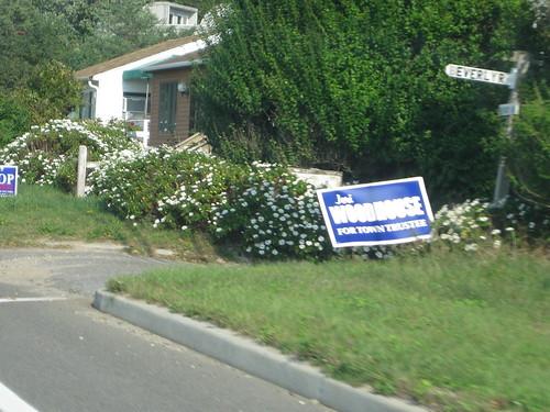 Political signs: Long Island