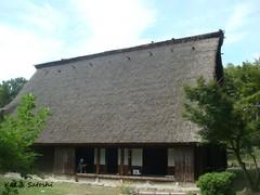 hattoriryokuchi (9)