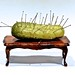 A Pin Pricked Pickle on a Coffee Table by ricko