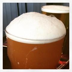 Beer #366photos
