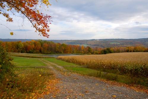 farm hills fallfoliage onondaga onondagany