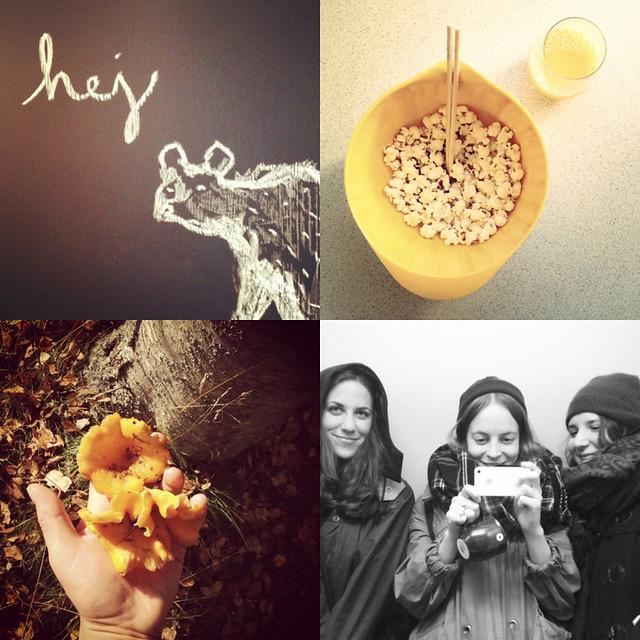 hejregina instagram (instagram: agnesregina)