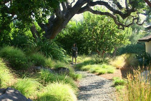 oak pathway