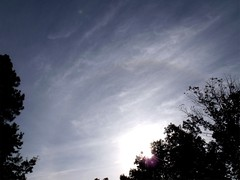 sunbow by Teckelcar
