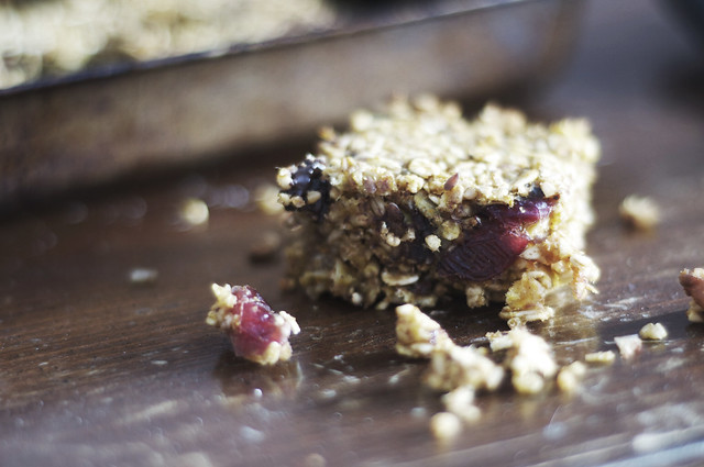 steel cut oatmeal bars