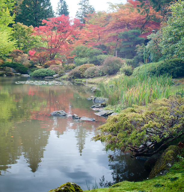 Japanese garden fall colors 10 flickr photo sharing for Japanese garden colors