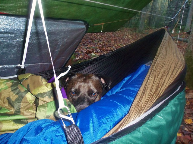 Old Sleeping Bag Becomes New Underquilt