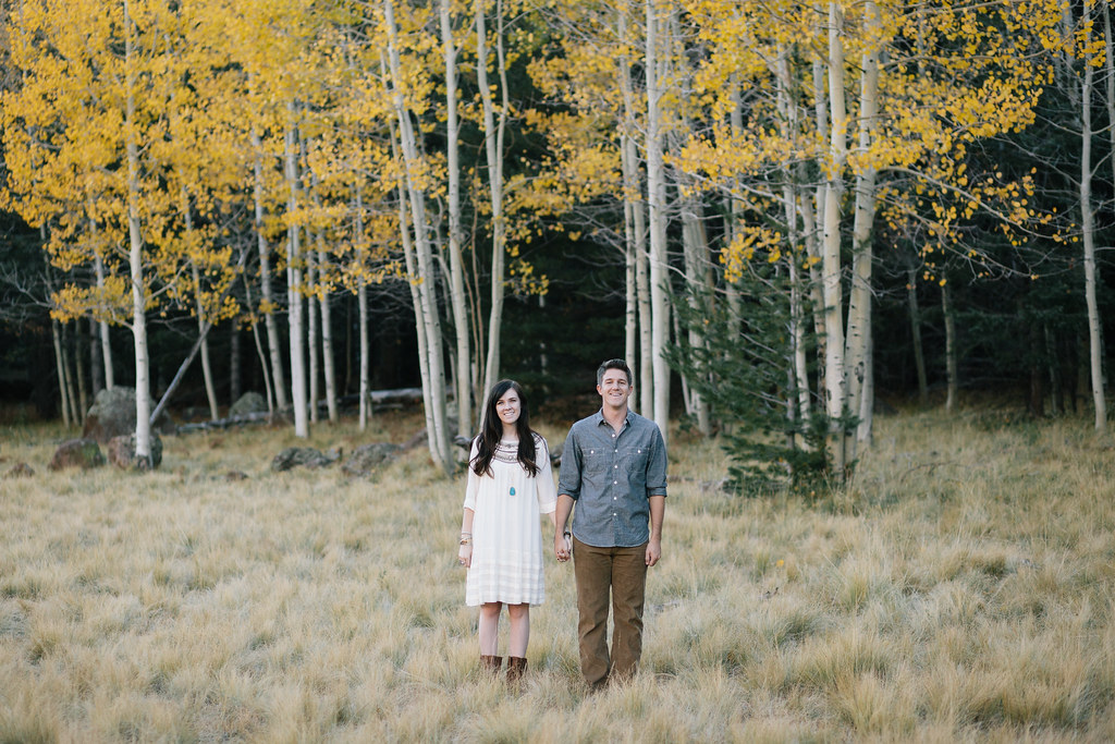 NickClaireEngagements2012-28