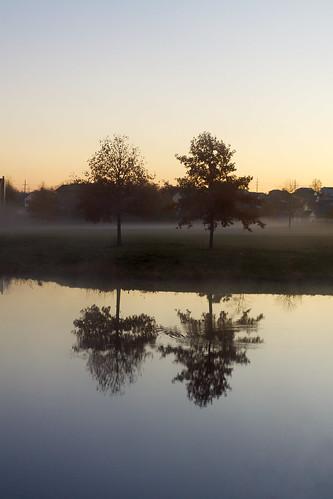 park morning trees mist nature fog sunrise reflections pond madison wi canonef50mmf14usm