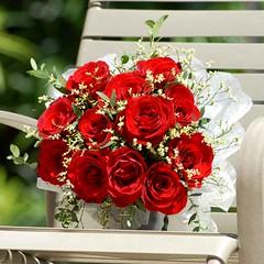 Natural Read Roses