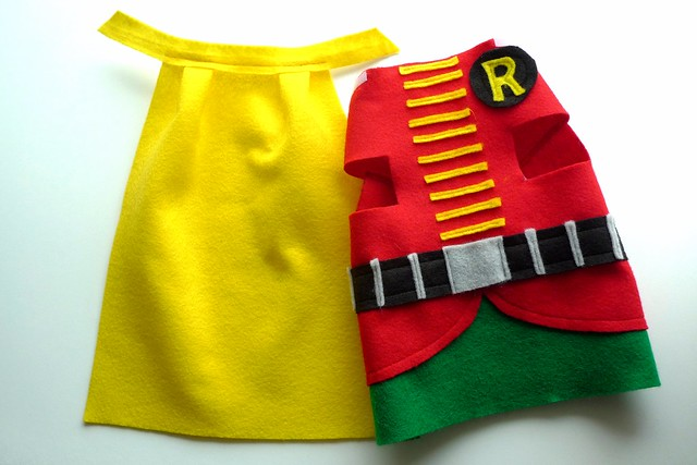 robin superhero kitty costume