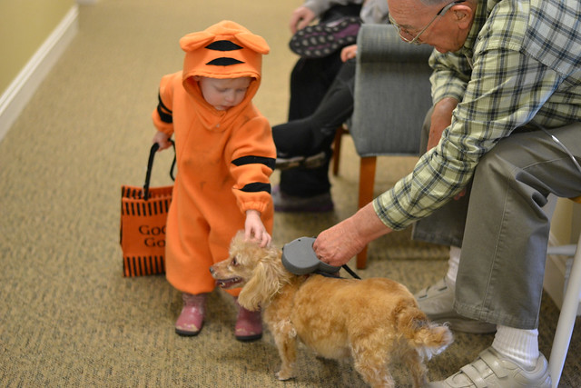 Trick or treating--hi puppy!