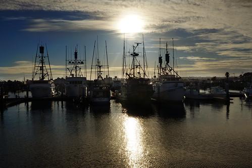 San Diego by Vilma Salazar