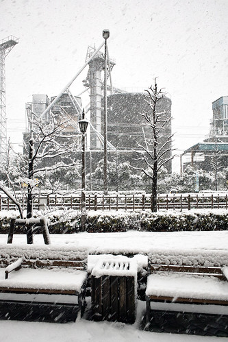 Snow in Tokyo