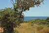Kreta 2009-1 330