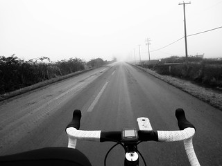 Fog - Cycling in Richmond BC