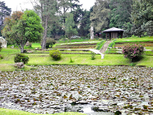 Beautiful Victoria Park, Nuwara Eliya