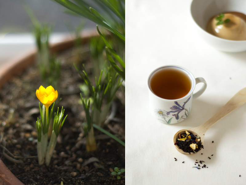 Panna cotta de chá preto e doce de leite // Black Tea Panna Cotta with Dulce de leche