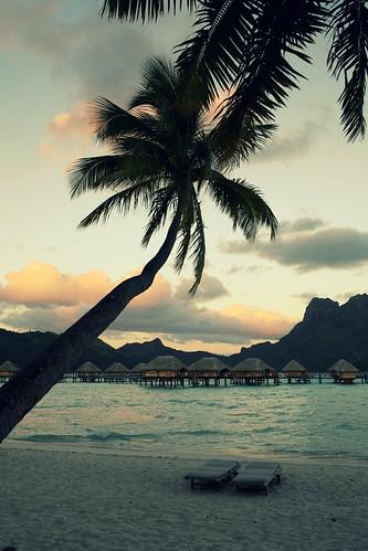 Tahiti21