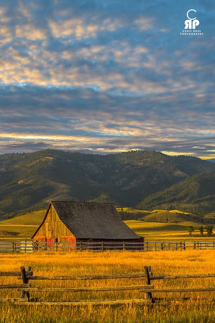 Swan Valley Sunset