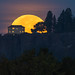 Cresting Moon at Arbor Crest by CraigGoodwin2