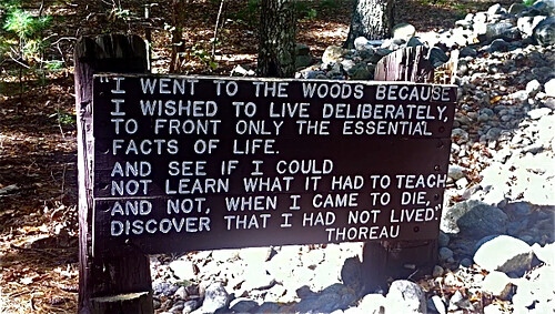 "I went to the woods because..."" Thoreau at Walden"