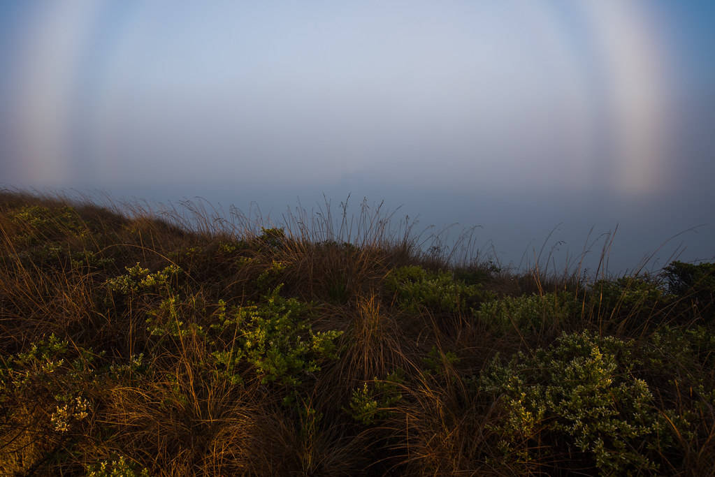 Fogbows and the Spectre of the Brocken