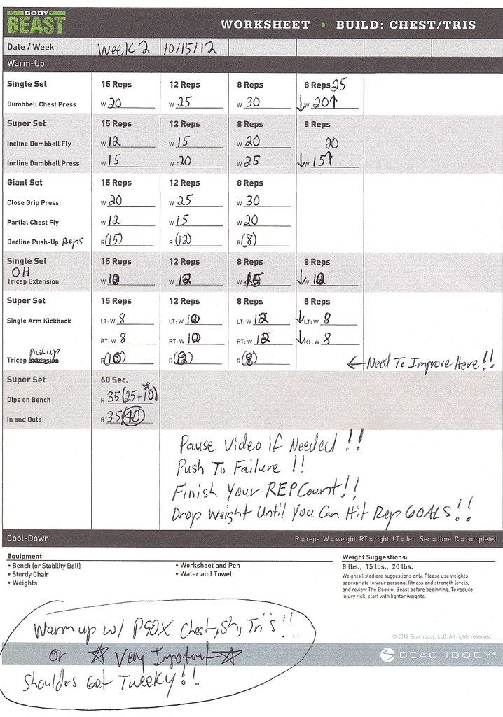 Team Beachbody HUGE BEAST Dedicated Republic Open to All – P90x Back and Biceps Worksheet