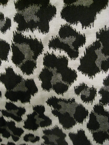 Free Photo Download: Leopard Print