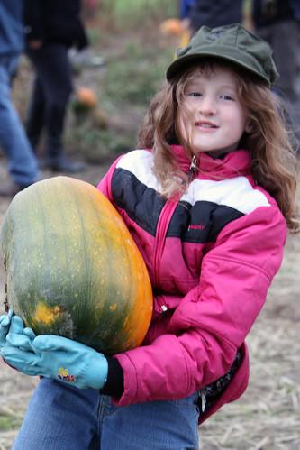 pumpkins-2012-4