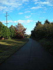 Blue sky over the Springwater Trail