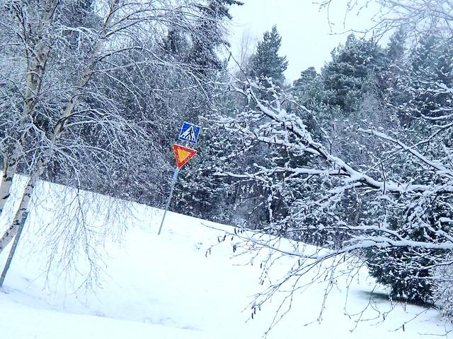 tääl on jo iha paksusti tota lunta! (: