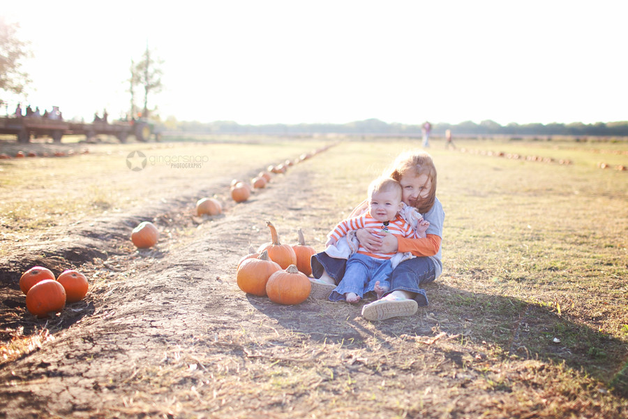2012 pumpkin patch11