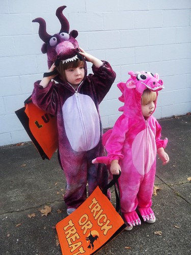 My little dragons