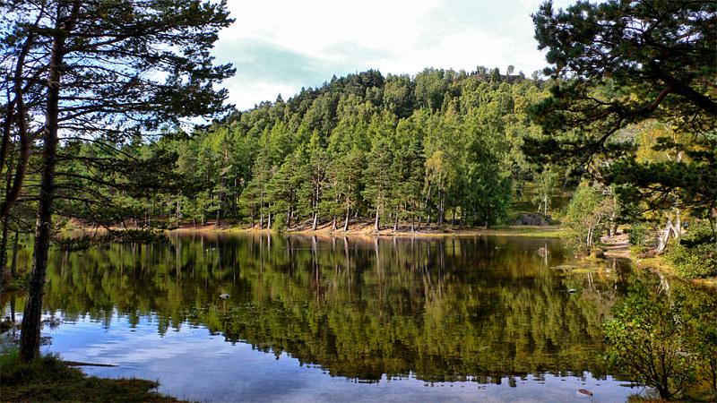 Mirror Loch