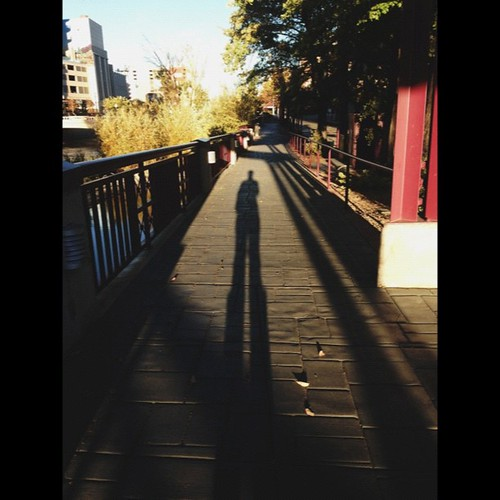 Stand tall. #shadow #shuttersisters #nowyouworkshops #reno