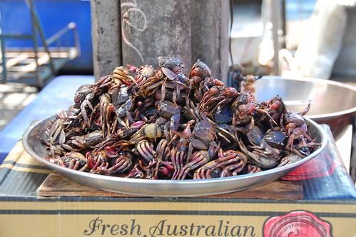 Bangkok crabs