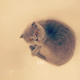 in bath